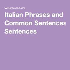 Italian Phrases and Common Sentences