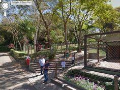 Com 33 anos de fundação, 50 mil metros quadrados de área construída e 880 animais, o Zoo de Bauru é o primeiro do Brasil a receber o serviço de visitas virtuais do Google Street View. O novo projeto do Google apresenta zoológicos e safáris em diversos países - leia mais no G1.