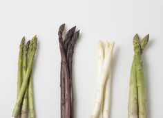 The Culinary Institute of America Food Enthusiasts :: Pan Steamed Lemon Asparagus