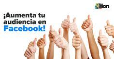 marketing-digital-audiencia-facebook-liion
