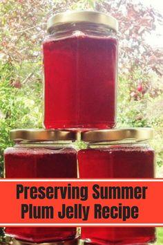 I decided to make a batch of plum jelly. Plum Jelly Recipes, Jam Recipes, Plum Preserves, Recipe Maker, Plum Jam, How To Make Jam, Pressure Cooker Recipes, Chutney, Sweet Treats