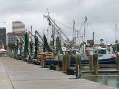 Whole Fleet, Forest Gump shrimp boats Corpus Christi Texas
