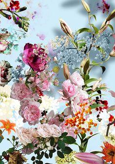 Surreal Flora from Isabelle Menin Art Floral, Motif Floral, Floral Flowers, Summer Decoration, Happy B Day, Flower Wallpaper, Iphone Wallpaper, Botanical Art, Flower Art