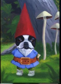 boston gnome  Gnome - Boston Terrier dog art magnet. $4.75, via Etsy.