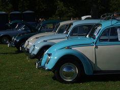 beetle-classic-cars