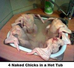 Funny pictures about Chicken jacuzzi. Oh, and cool pics about Chicken jacuzzi. Also, Chicken jacuzzi photos. Jacuzzi, Chicken Humor, Funny Chicken, Raw Chicken, Chicken Scratch, Chicken Soup, Cursed Images, Super Funny, Just For Laughs