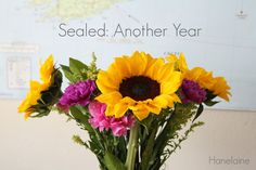 Sealed: Another Year | Hanelaine College, Semester, Summer