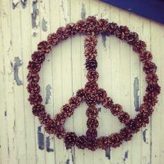 fircone peace #peace @LCTheater #GOLDENBOYDreams