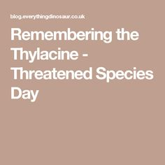 Remembering the Thylacine - Threatened Species Day