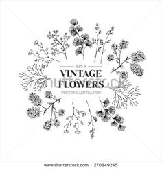Hand drawn herb composition. Floral template. Vector illustration - stock vector