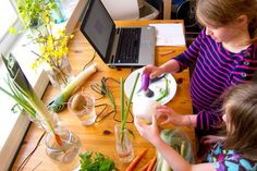 Micro-Garden Lists You Need For Kids' Fun In The Kitchen | Food Science | Susan Lutz