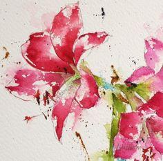 amaryllis, flowers, bulbs, red, pink, watercolor, painting, fine art, Lisa Livoni, Napa Valley artist, colorist