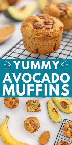 This avocado banana muffin recipe with chocolate chips, is healthy, dairy-free, low sugar, for kids, a healthy snack #muffins #muffinrecipes #dairyfree #healthyrecipe #avocado Muffin Recipes, Baby Food Recipes, Snack Recipes, Family Recipes, Cooking Recipes, Avocado Recipes, Chocolate Chip Recipes, Chocolate Chips, Low Sugar Snacks