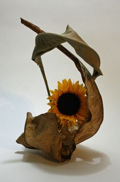 Sunflower with dried banana and strelitzia leaves 365 Days of Ikebana… Ikebana Arrangements, Ikebana Flower Arrangement, Flower Arrangements Simple, Dried Flower Arrangements, Dried Flowers, Flower Frame, Flower Art, Cactus Flower, Ikebana Sogetsu