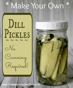 Make Your Own Dill Pickles - Easy one quart recipe with no canning required!