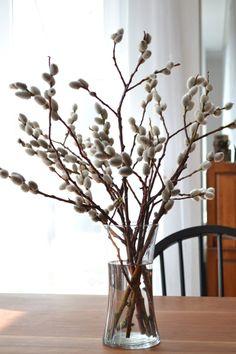 Få kvistarna att blomma – knep | ELLE Decoration
