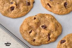Cholesterol Free Chocolate Chip Cookies : America's favorite cookie without cholesterol! If desired, scoop dough into mounds and freeze. Allow to thaw and bake when needed. Alternatively, already baked cookies freeze very well. Low Cholesterol Diet Plan, Cholesterol Lowering Foods, Cholesterol Friendly Recipes, Cholesterol Symptoms, Cholesterol Levels, Cookie Recipes, Dessert Recipes, Diet Recipes, Healthy Recipes
