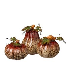 Look at this #zulilyfind! Pumpkin & Gourd Set by Grasslands Road #zulilyfinds