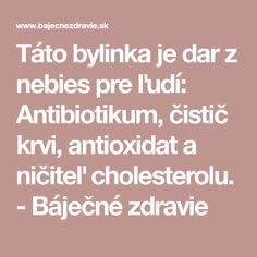 Táto bylinka je dar z nebies pre ľudí: Antibiotikum, čistič krvi, antioxidat a ničiteľ cholesterolu. - Báječné zdravie