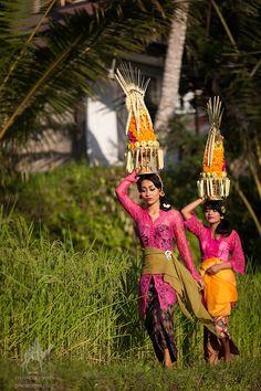 Galungan, Bali                                                                                                                                                                                 More