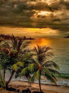 Exotic Beaches - Sunset Beach