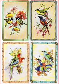 lovely vintage english swap cards with birds SORRY NOT FOR SALE