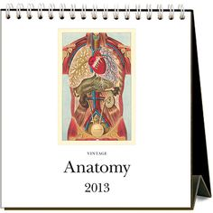 Vintage Anatomy Easel Calendar: Are you fascinated by the inner workings of the human body? Got a thing for organs, muscles, bones, and brains? You're going to love this Anatomy easel desk calendar. It features 12 vintage medical illustrations of all parts human.   Our Price $12.95   http://www.calendars.com/Educational/Vintage-Anatomy-2013-Easel-Desk-Calendar/prod201300003773/?categoryId=cat00384=cat00384#
