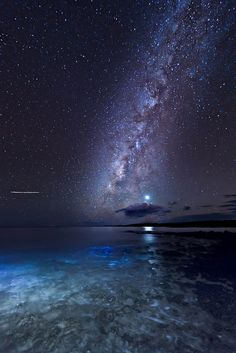 Milky Way and Venus