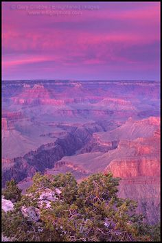 Photo: Alpenglow on storm clouds at sunset at Pima Point, South Rim, Grand Canyon National Park, Arizona
