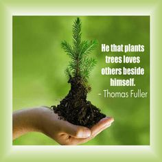 He that plants tree loves others beside himself. ~Thomas Fuller