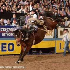 Rusty Wright made a HARD run for #Gold at this year's #Superbowl of #Rodeo, aka…