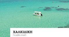 ΧΑΛΚΙΔΙΚΗ – Για κάθε εποχή  http://www.xenagosthessalonikis.gr/xalkidiki/