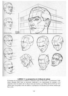 30 LAMINA 11. La perspectiva en el dibujo de cabeza El dominio de la perspectiva establece la diferencia entre el aficiona...