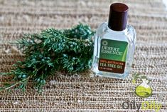 How to Make Tea Tree Oil Soap: Step-by-Step Guide