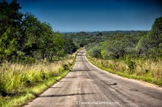 Kruger National Park South Africa on a warm summer's day (By www.shakilmedia.com)