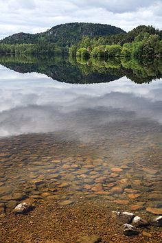 Island in the sky, Aviemore, Scotland Copyright: Keith Taylor