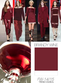 FW 2014-2015 color trend brandy wine