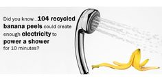 Recycling Facts, Banana Peels, Did You Know, Centre