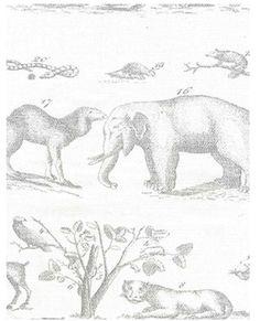 Andrew Martin Jungle Fabric