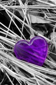 Splash of Color Purple Love, All Things Purple, Shades Of Purple, Love Heart Images, I Love Heart, Color Splash, Color Pop, Colour, Splash Photography