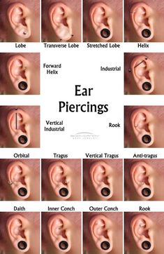 i want stretched lobe which i will do in the next week probably, industrial, tragus, and a rook.