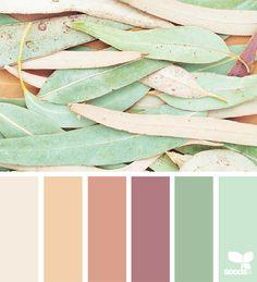 Color Nature 7.18.18