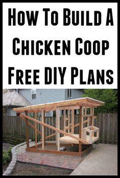 How To Build A Chicken Coop (Free DIY Plans) #SmallChickenCoopsDiy