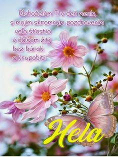 Hela  Blahoželám Ti v deň menín, s mojim skromným pozdravením veľa šťastia v ďalšom žití bez búrok a krupobití Plants, Flora, Plant