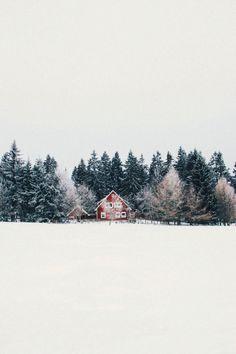 blazepress:  Photo byjannikobenhoff.