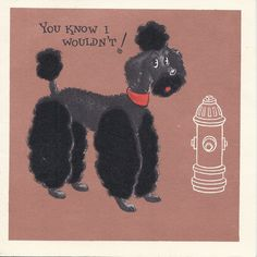 Poodle drawing greeting card 5x7 standard poodle art by esart 495 c476 vintage happy birthday greeting card by hallmark poodle bookmarktalkfo Gallery