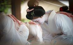 よろしゅうたのみます 舞妓(maiko) 舞踊奉納 KYOTO,JAPAN