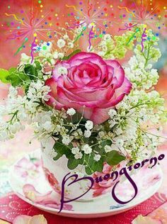 Good morning sister and yours,have a nice Tuesday ,God bless ✌.