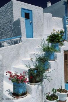 flowers in pots on staircase