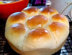 MarksBlackPot: Dutch Oven Recipes and Cooking: Dutch Oven Soft Dinner Rolls